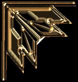 COIN PSP